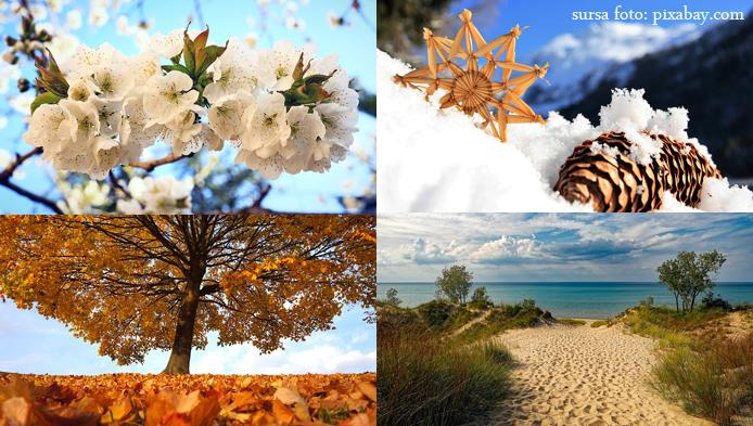 Primavara, vara, toamna sau iarna