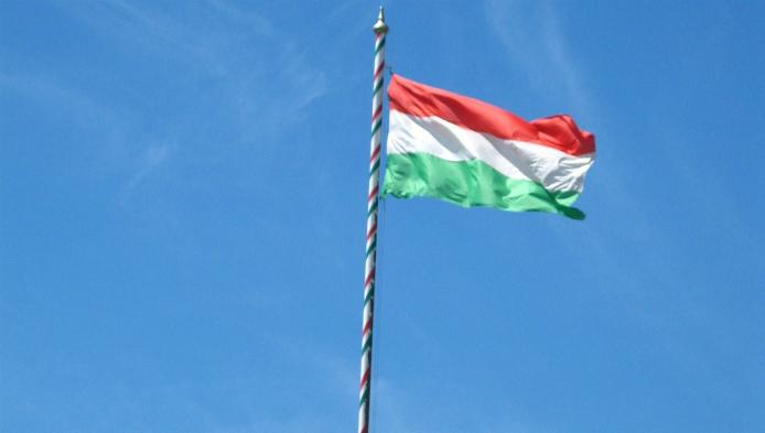 Testeaza-ti maghiara!