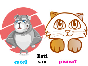 Esti pisica sau catel?