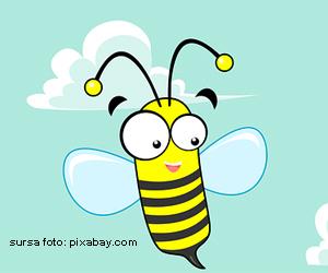 Testul ghicitorilor cu insecte