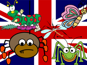 Sa invatam insectele in limba engleza 2
