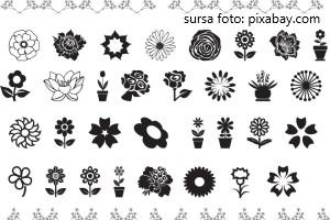 Test greu cu flori din planse de colorat