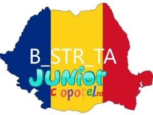 Spanzuratoarea oraselor din Romania
