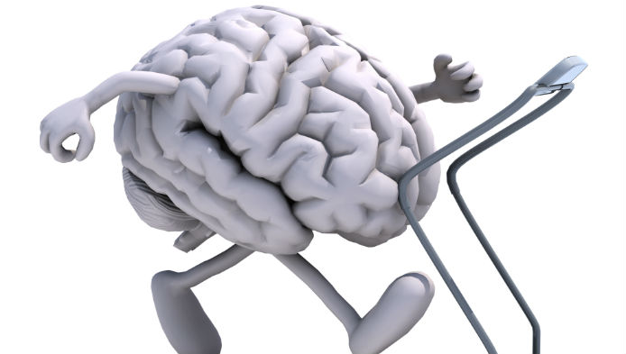 Testul creierului