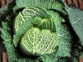 Testul legumelor la engleza