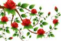Testul florilor la matematica