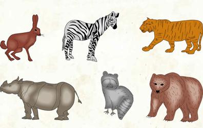 Evolutia animalelor